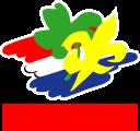 logo_scouting